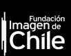 fundacin imagen de chile